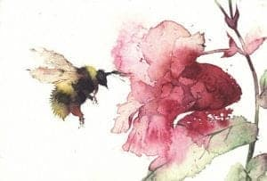 318897_bee-with-balsam