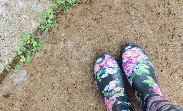 weeds in a crack in path with gum boots