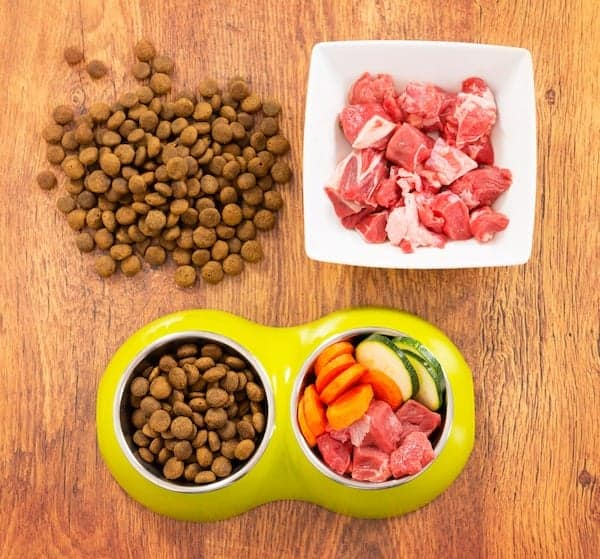Dry dog food in a bowl beside raw dog food and vegetables